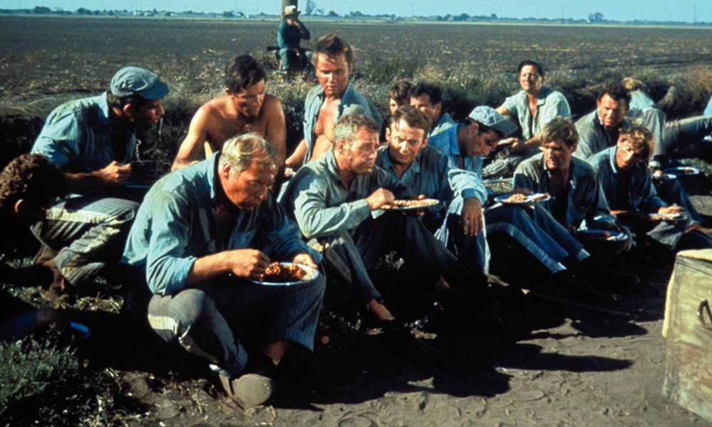 Cool Hand Luke Still 3