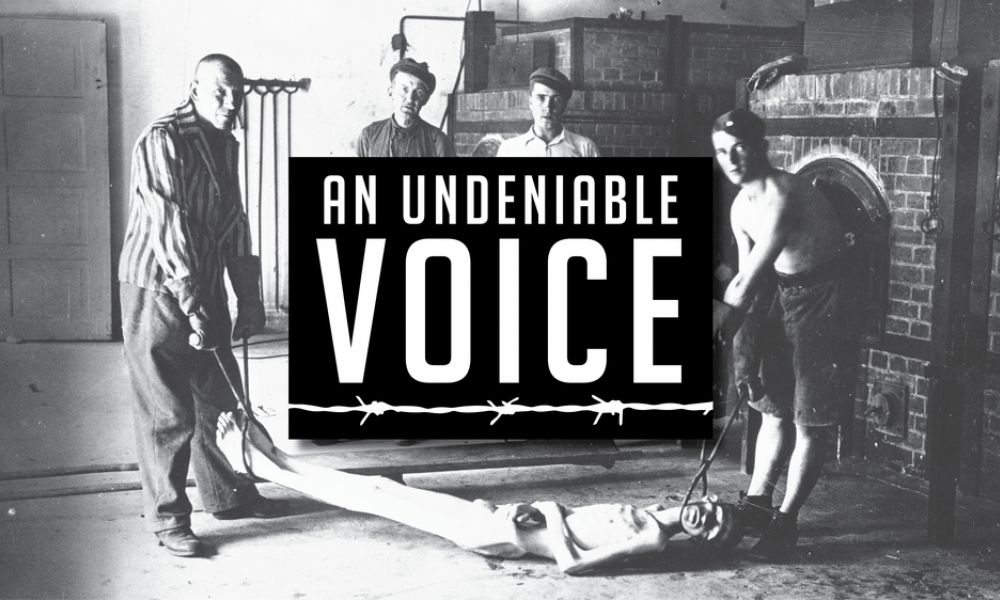 Undeniable Voice Still
